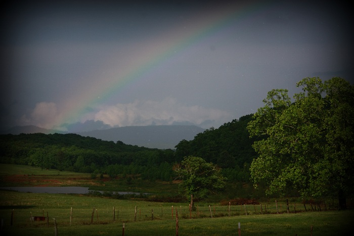Rainbow over Felicity Ranch